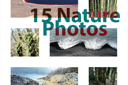 15-Free-Nature-Photos