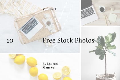 Curated Free Stock Photo