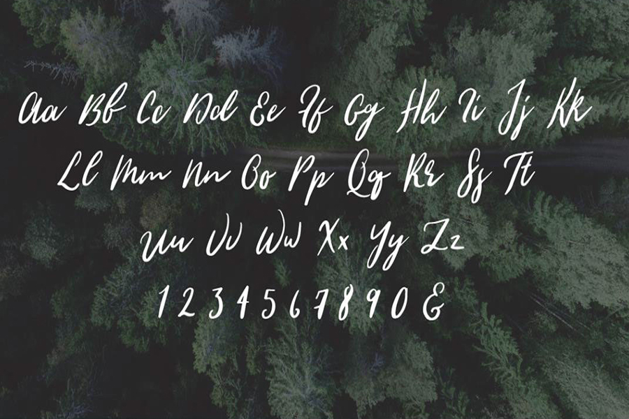 Wild Youth Script Free Font