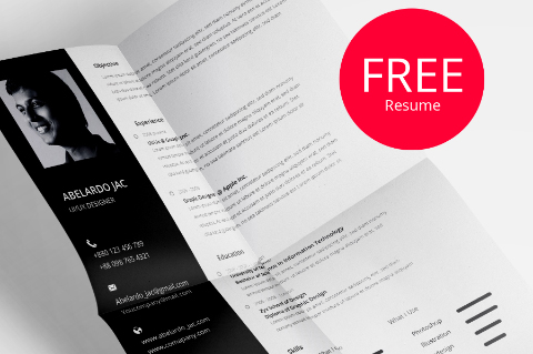 Free Psd CvResume Template  Free Design Resources
