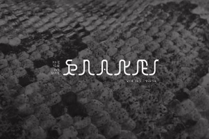 Snake Free Typeface