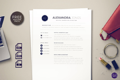 Clean Styled Resume Pack Free Sample