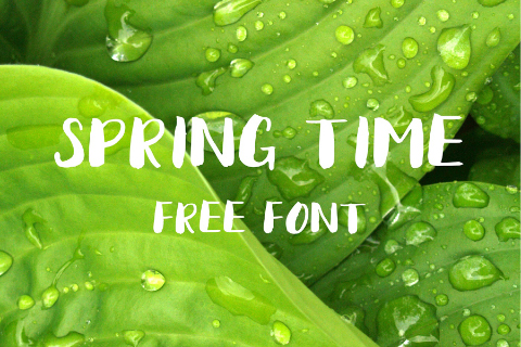 Spring Time Brush Free Typeface