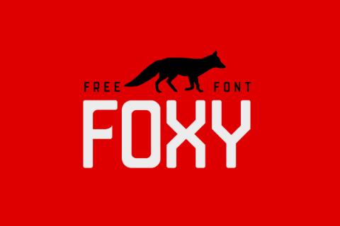 Foxy Display-Sans Free Font