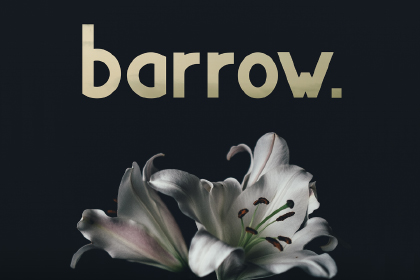 Barrow Display Free Typeface