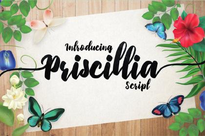 Priscillia Script Free Demo