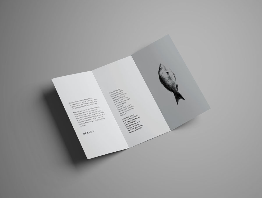 Free Realistic Trifold Brochure Mockup  Free Design Resources
