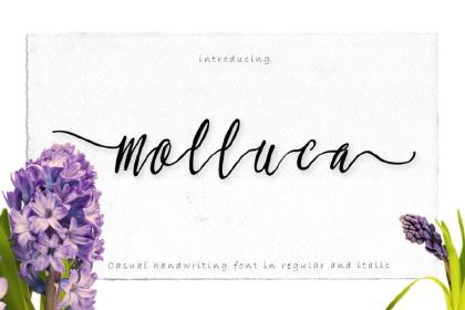 Molluca Script Free Demo