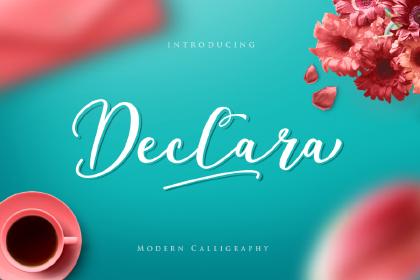 Declara Script Free Demo