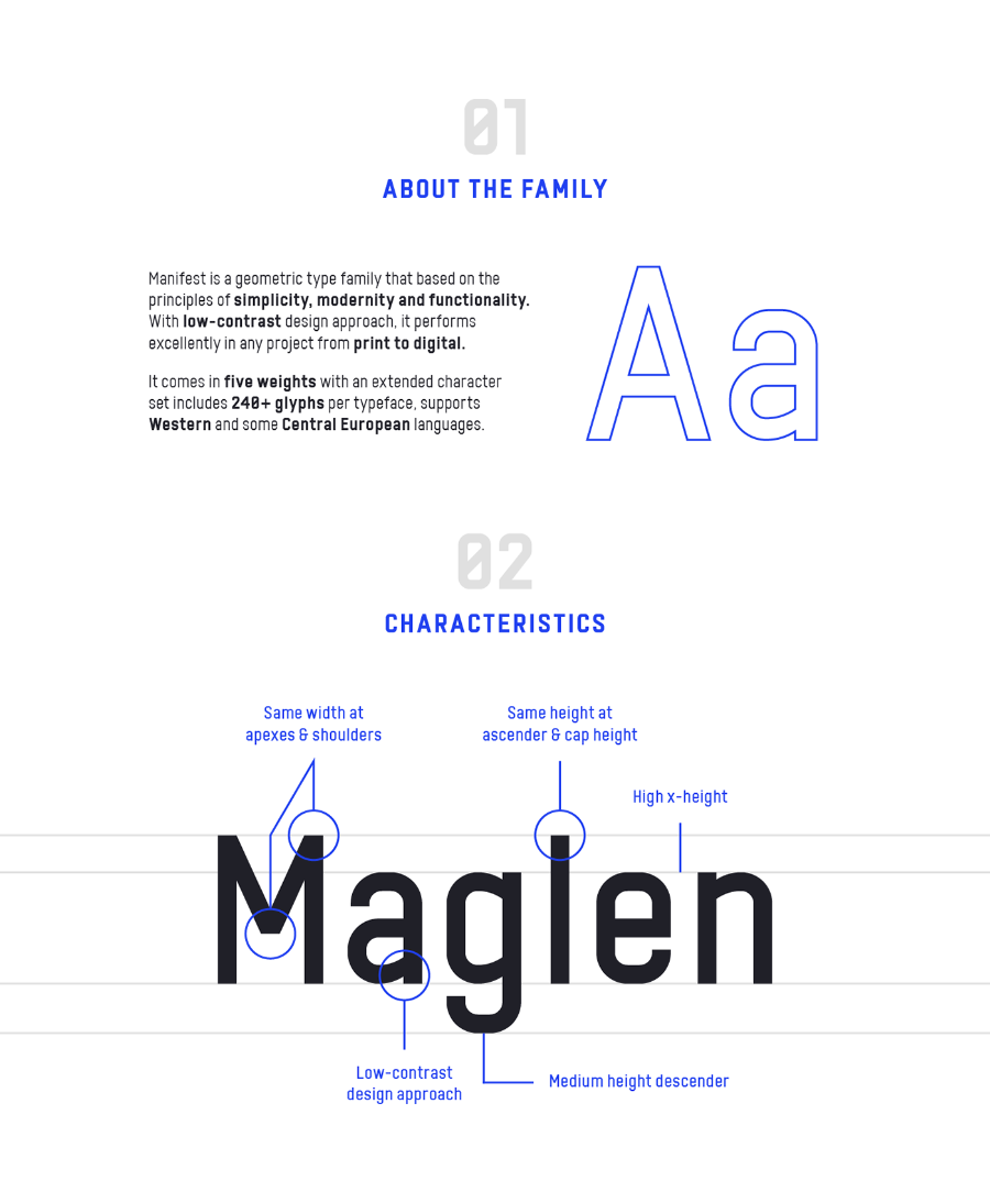Manifest Type Family Demo