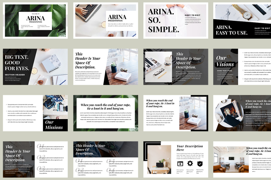 Arina Presentation Template Demo  Free Design Resources