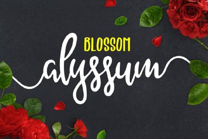 Alyssum Blossom Font Demo