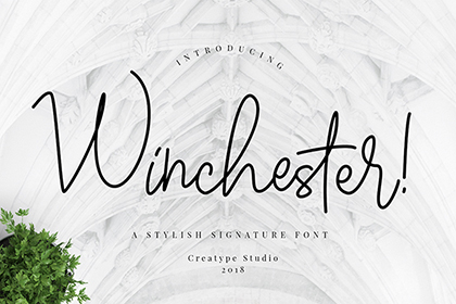 Winchester Script Font Demo