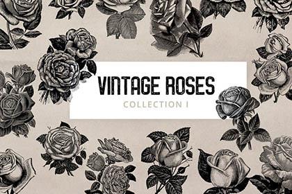 Free Vintage Roses Illustration
