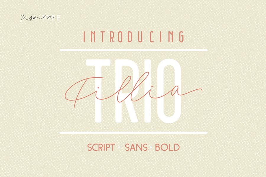 Fillia Script Free Font Demo