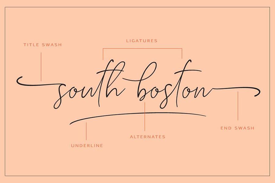 South Boston Script Free Demo