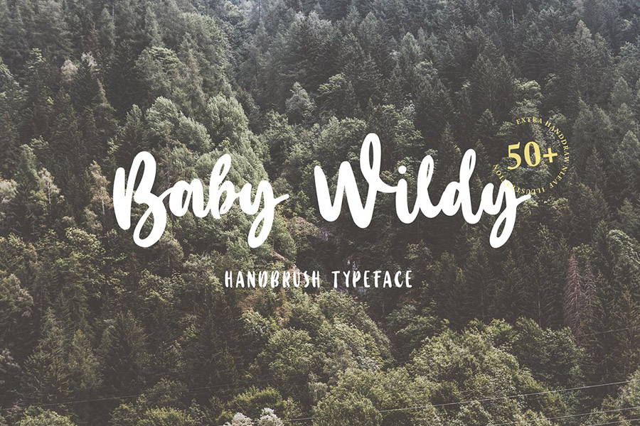 Baby Wildy Handbrush Font