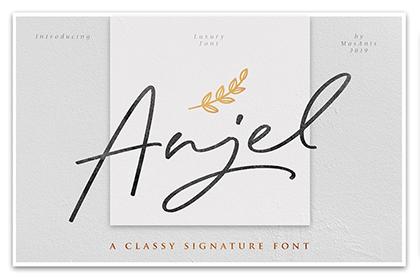 Anjel Signature Script Demo