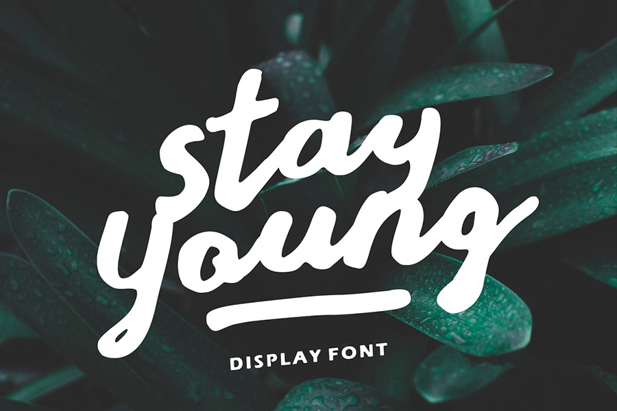 Stay Young Handlettering Display