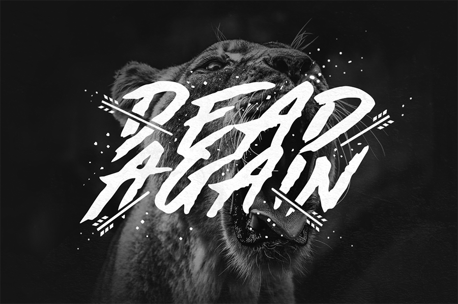 Made By Bears Display Font
