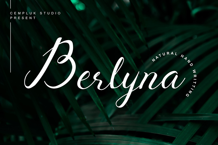 Berlyna Script Font Demo