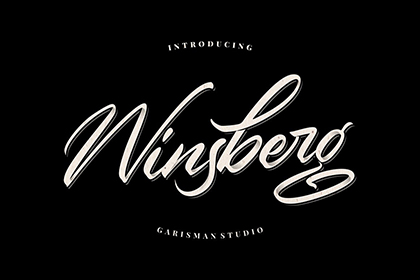 Winsberg Handlettering Script