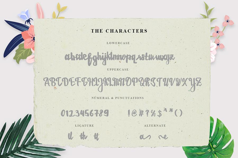 Estrellasa Modern Script Font