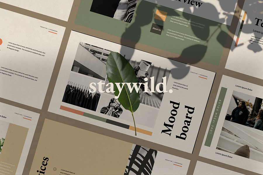 Staywild Presentation Template