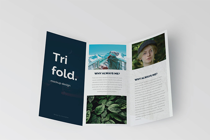 Trifold Brochure Mock-Up Set
