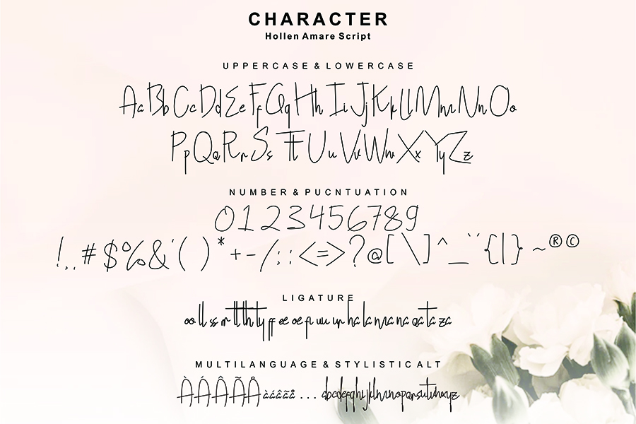 Hollen Amare Font Duo