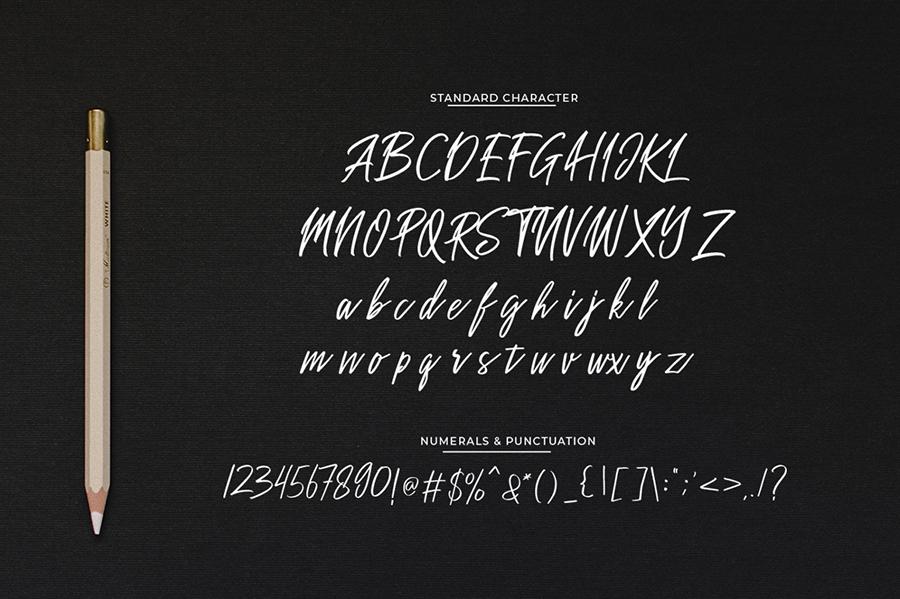 Sakoda Signature Script Font